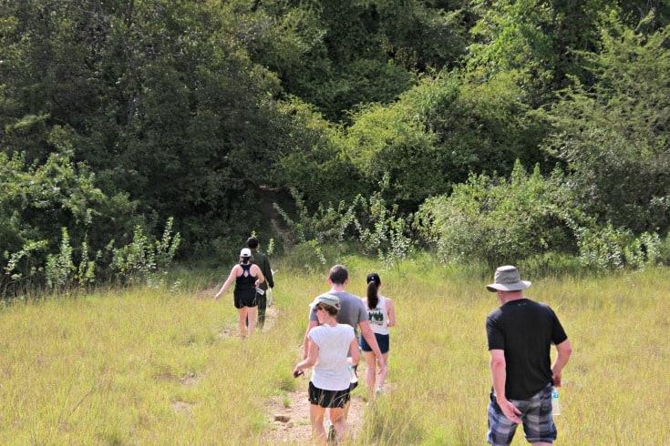 hiking around Komodo dragons