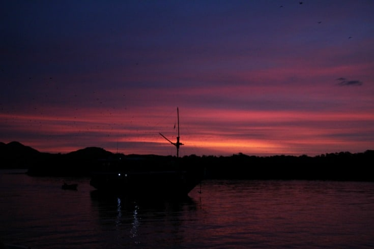 sunset after Komodo dragons
