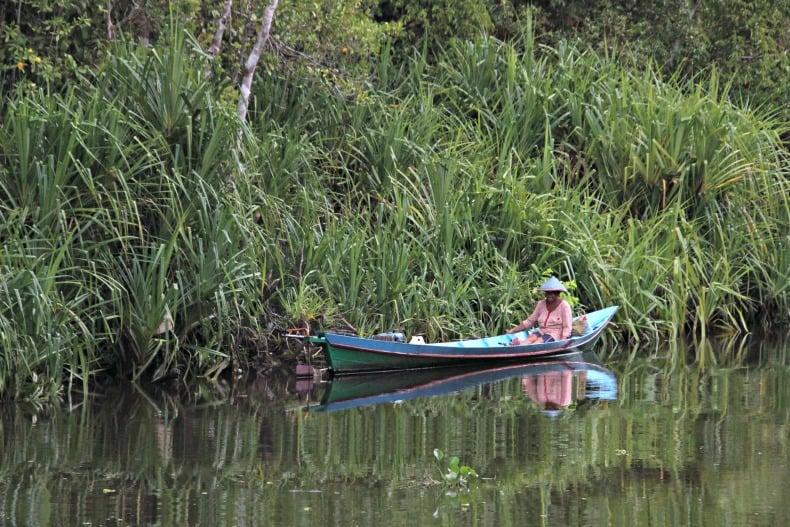 A local on Borneo ecotour