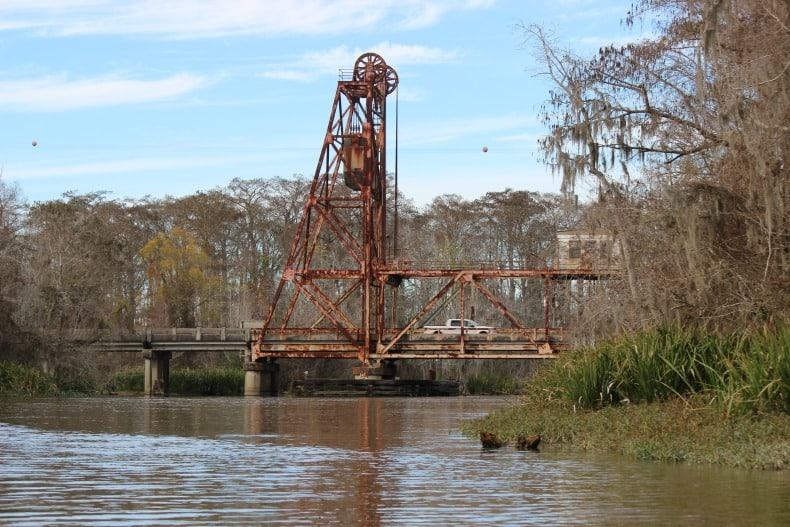 Swamp tour by Pearl River Eco Tours outside new orleans