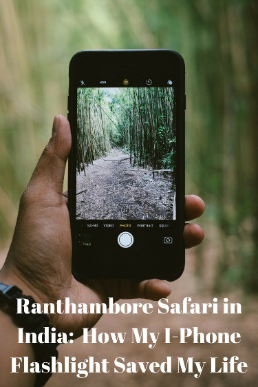 Ranthambore Safari, India, tiger safari, Sher Bagh, I-phone, I-Phone flashlight, flashlight,