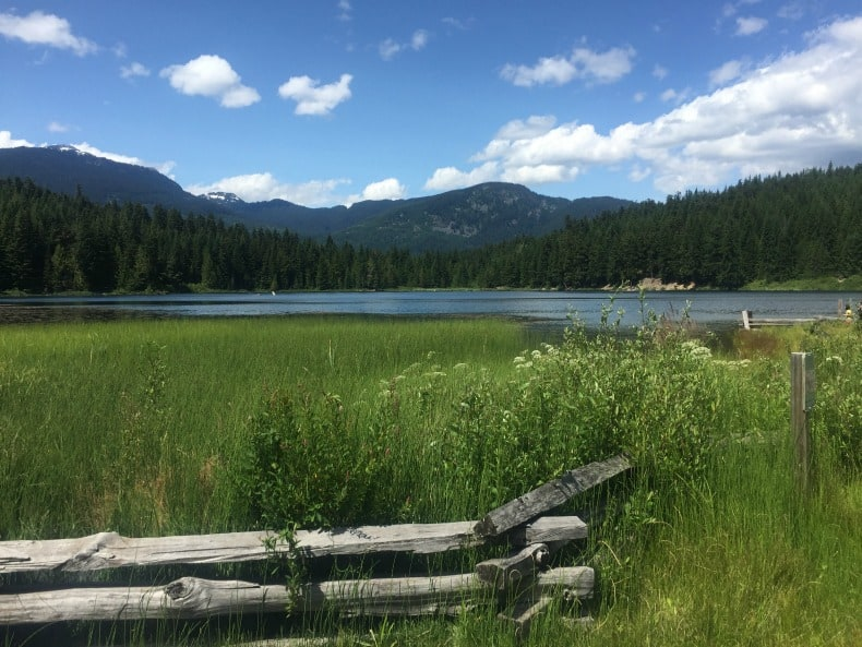 Alpha lake park during Whistler Summer