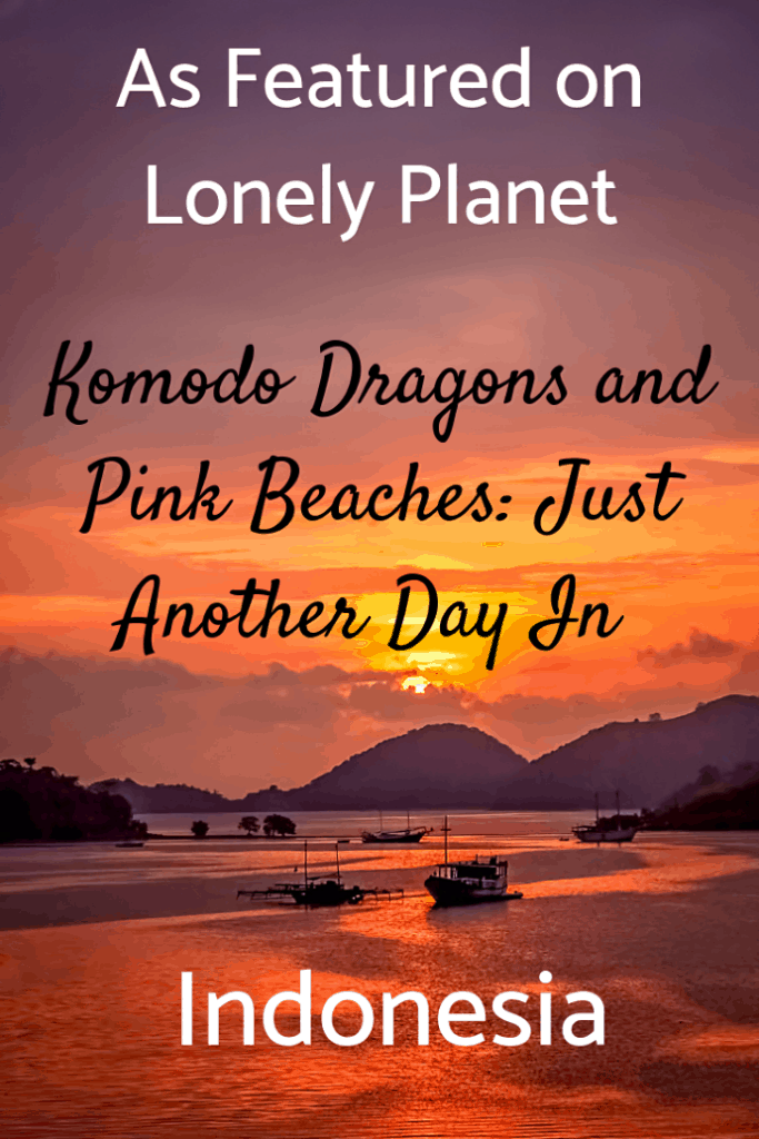 I am thrilled that Lonely Planet chose this article to celebrate Best in Travel. Our four day trip to Komodo National Park in Indonesia was extraordinary. We hiked with Komodo dragons, swam with giant manta rays and turtles, hung out on deserted pink beaches, and witnessed thousands of flying foxes on their nightly migration. What are you waiting for? #travel #familytravel #bestintravel #lonelyplanet #worldunesco |Asia, Flores, Komodo Resort, Makaser, mangrove, Padar Island, Pimpe, Rinca,