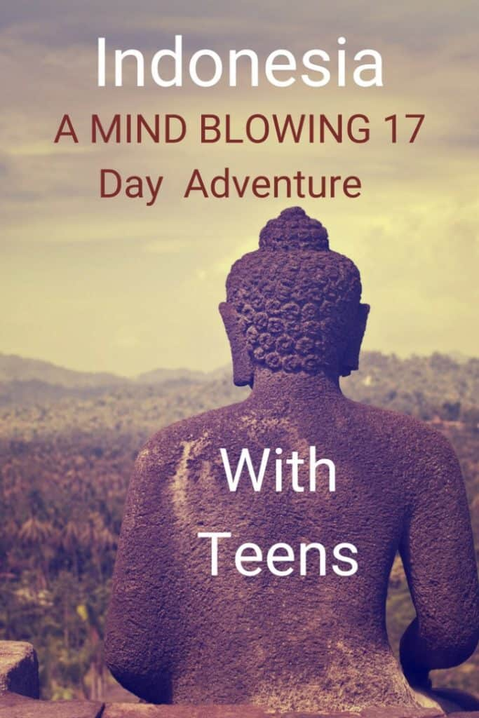 We took our three teenagers on an incredible 17 day adventure in Indonesia. We hiked with Komodo dragons, swam with giant manta rays, watched the sunrise on top of a volcano, trekked for orangutans, hung out at pink beaches, and explored ancient temples. What are you going to do first? #travel #familytravel #travelwithkids #travelwithteens #Indonesia #Bali #Asia |Borneo, Borobudur, Flores, Java, Kelimutu, Komodo National Park, Mount Merapi, Padar, Prambanan, Unesco, Yogyakarta