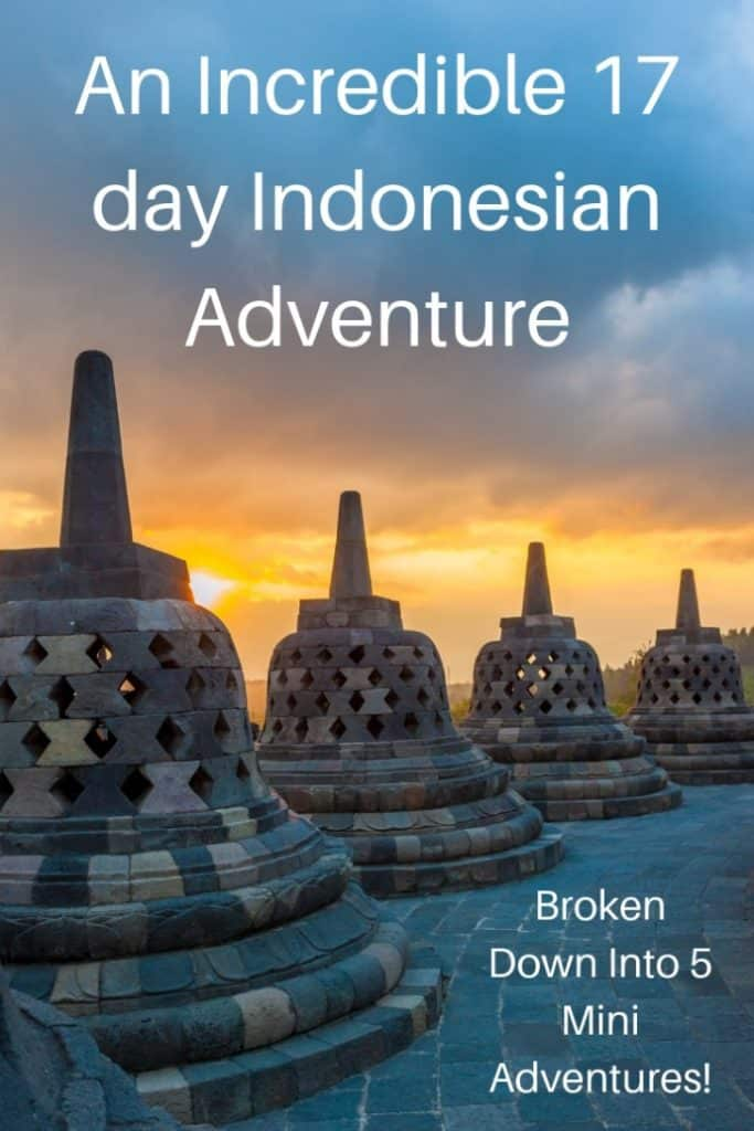 We went on an incredible 17 day Indonesian adventure. Read about our 5 mini adventures that took us hiking with Komodo dragons, swimming with giant manta rays, watching the sunrise on top of a volcano, trekking for orangutans, and exploring pink beaches and ancient temples.| #travel #familytravel #travelwithkids #travelwithteens #Indonesia #Bali #Asia |Bali, Borneo, Borobudur, Flores, Java, Kelimutu, Komodo National Park, Mount Merapi,  Padar, pink beaches, Prambanan, Unesco, Yogyakarta
